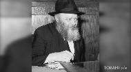 Curious Tales of the Talmud: Finding Personal Meaning in the Legends of our Sages
