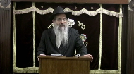 "The basics of Passover preparations presented by Rabbi Berel Bell, beginning with general comments on Pesach cleaning followed by laws of chametz and chametz products, searching or chametz and selling the chametz. Rabbi Bell is one of the main halachic authorities behind the Passover publication, ""The Voice of the Va'ad,"" dedicated to laws and practical guidance for Pesach."