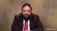 Does Orthodox Judaism have a stance on the environment?