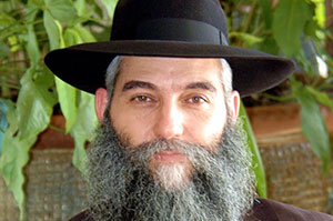 Rabbi Aaron Laine