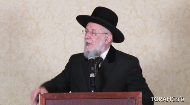 From where are the seeds of Jewish excellency in all areas of life?
