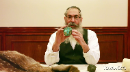 Animals, rocks and intentions together make a Torah scroll.