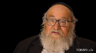 Does Judaism believe in animal rights?.