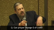 You've got questions, they've got answers!