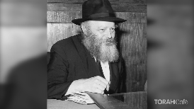 Curious Tales of the Talmud: Finding Personal Meaning in the Legends of our Sages    Judaism is full of deeply resonant and transformative wisdom. Some of its most profound ideas about life, the universe, the soul, and our relationship with G-d are encrypted in an unusual place-within peculiar and nonsensical Talmudic tales