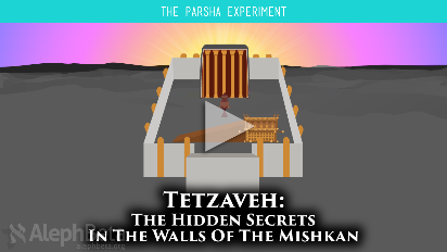 In Parshat Tetzaveh (Exodus 27:20-30:10), God goes to great lengths to explain each specific detail for the Mishkan's structure and design. Obviously the details are more than just a means for beautification - there must be deep and meaningful significance for us all